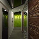 dizajn-prihozhej-i-koridora-5