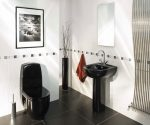dizajn-vanny-sovmeshhennoj-s-tualetom-11