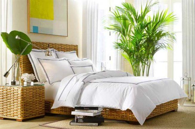 Фитодизайн в спальне