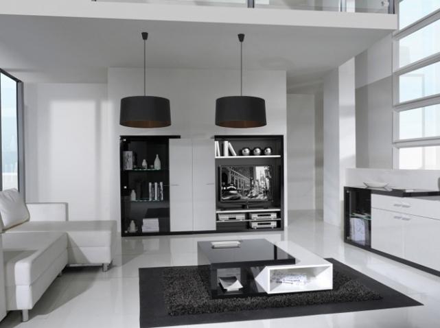 Интерьер чёрно-белой гостиной