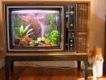 Аквариум в виде телевизора