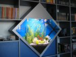Оформление аквариума в интерьере