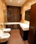 dizajn-vanny-sovmeshhennoj-s-tualetom-15