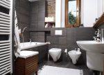 dizajn-vanny-sovmeshhennoj-s-tualetom-4