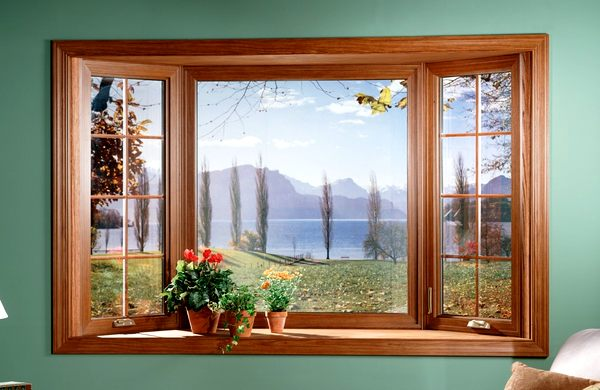 деревянные окна, окна из дерева, вид из окна, пейзаж из окна, цветы на окне, преимущества деревянных окон