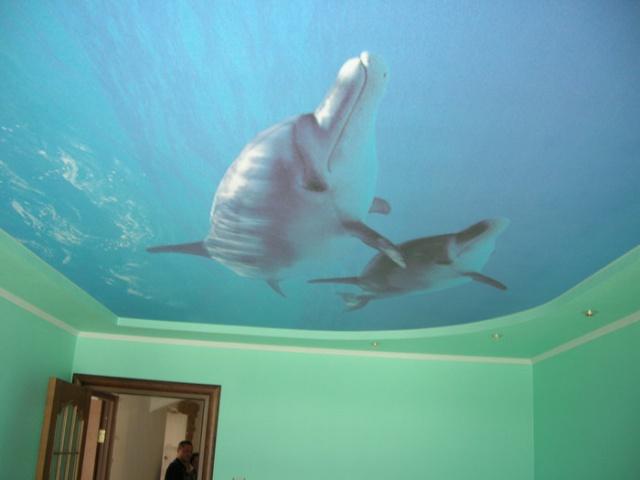 Потолок с изображением дельфинов