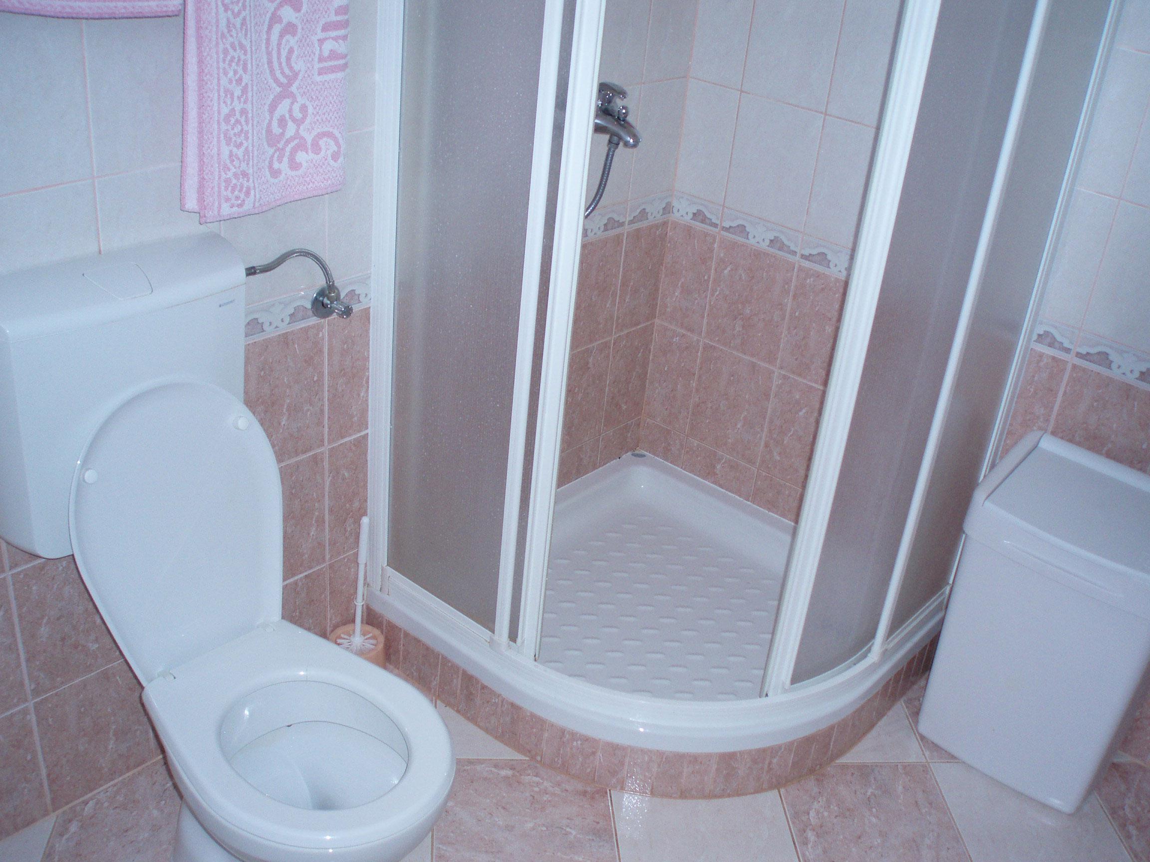 Ремонт в ванной комнате: выбор унитаза и душевой кабины