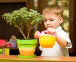 Ребенок ухаживает за комнатными цветами
