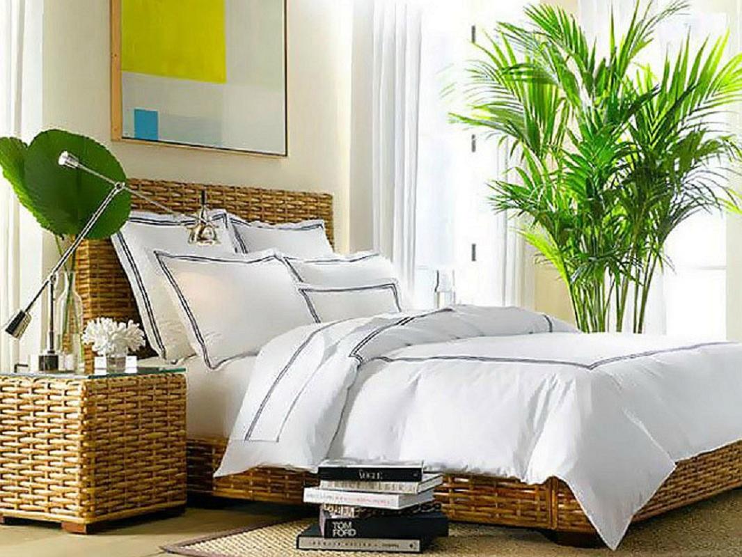 многим картинки спальни растения певица выложила свое