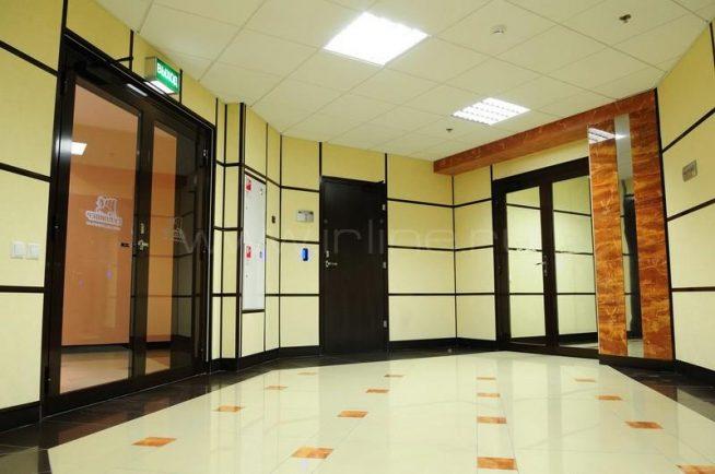 Гипсовиниловые панели в отделке стен