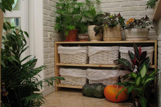 Хранение овощей на тёплом балконе