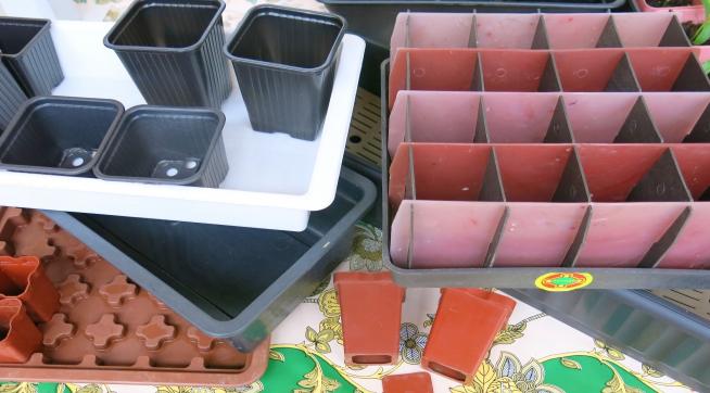 Готовые контейнеры для рассады