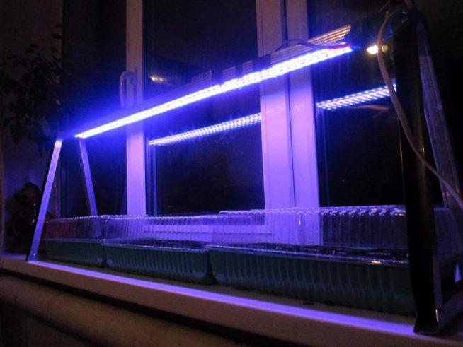 Подсветка рассады светодиодными лампами