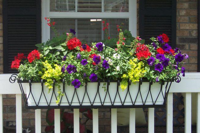 Красивый цветник на перилах балкона