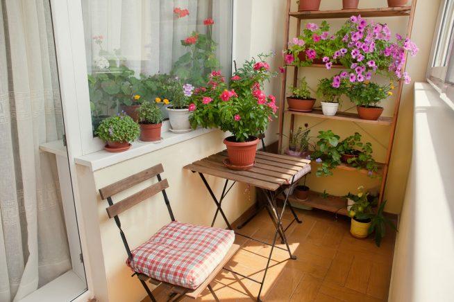 Стеллаж с цветами на балконе