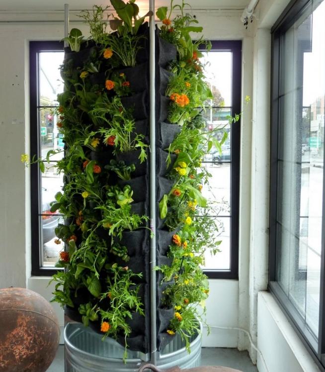 Вертикальный садик на балконе