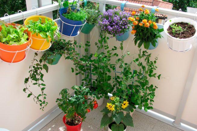 Подвесные цветочные горшки на балконе
