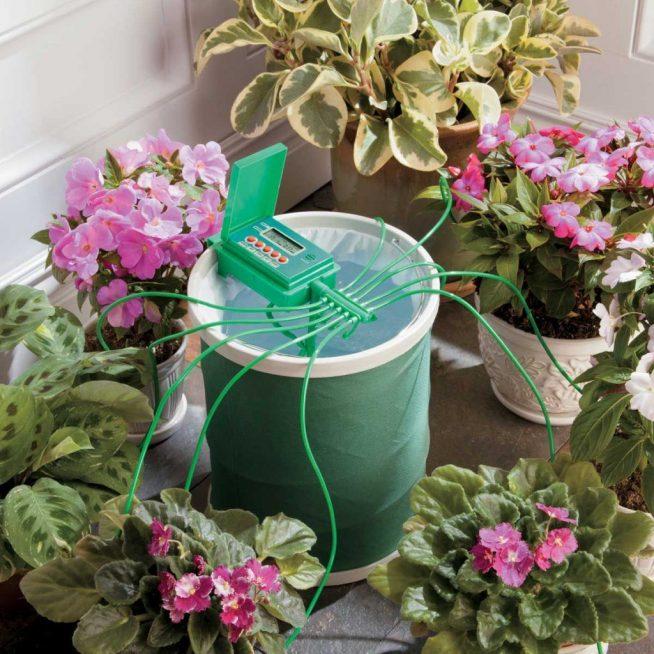 Профессиональная система полива комнатных цветов