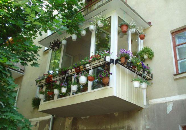 Оформление цветами застеклённого балкона