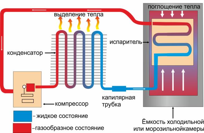 Схема работы однокамерного холодильника