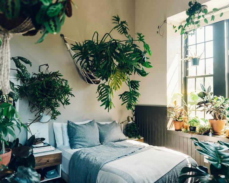 Какие вещи в спальне опасны для здоровья – 9 предметов, которые провоцируют аллергию