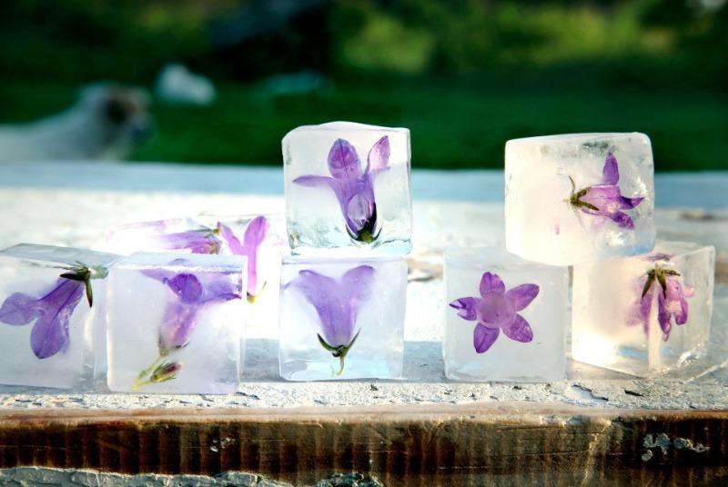 Кубики льда на все случаи жизни – что можно заморозить и для чего